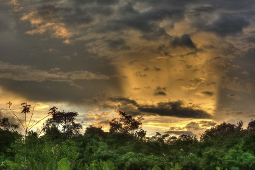 lake rain ecuador amazon rainforest skies anangu transpiration