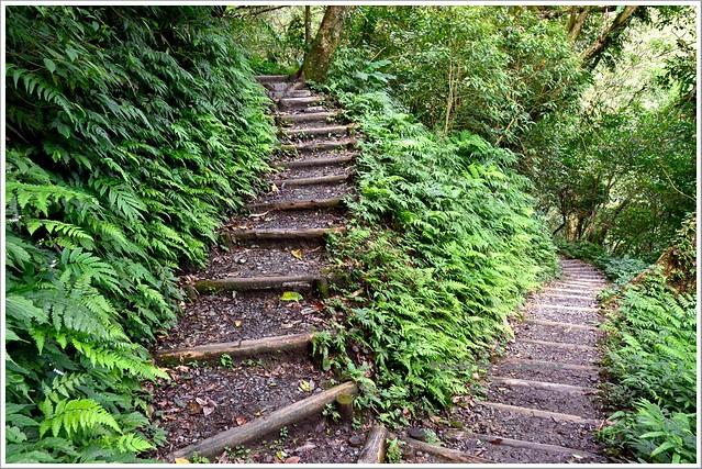 聖母山莊聖母登山步道宜蘭礁溪031-DSC_6775