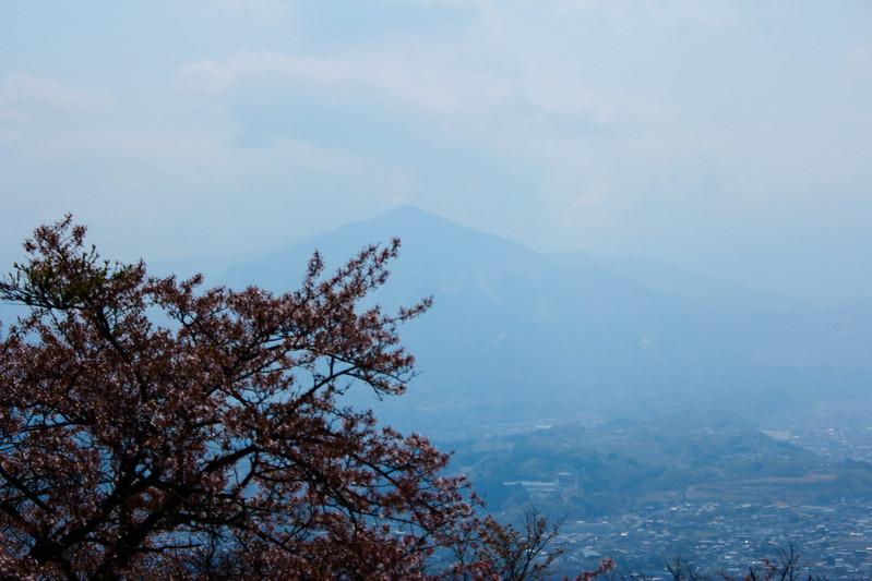 2014-04-19_00276_美の山.jpg