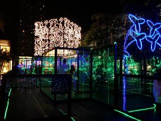 11 CIRCLEG 尖沙咀 1881 沙田新城市廣場 透明迷宮 (7)