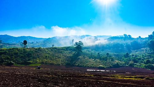 field fog laos oudomxay namet