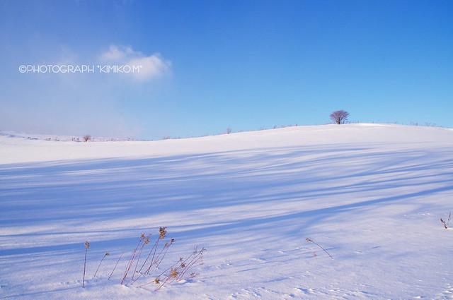 WinterBlue1