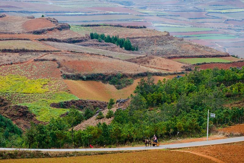 kunming_day3_4