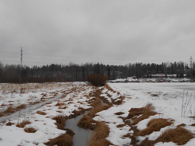 Poikkeuksellisen aikaista lumen sulamista Espoon Leppävaaran ja Karakallion välillä 20.2.2015