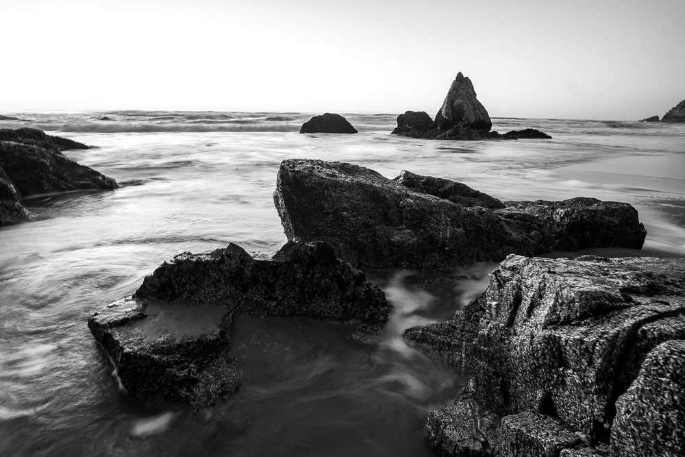 Grey Whale Cove 3