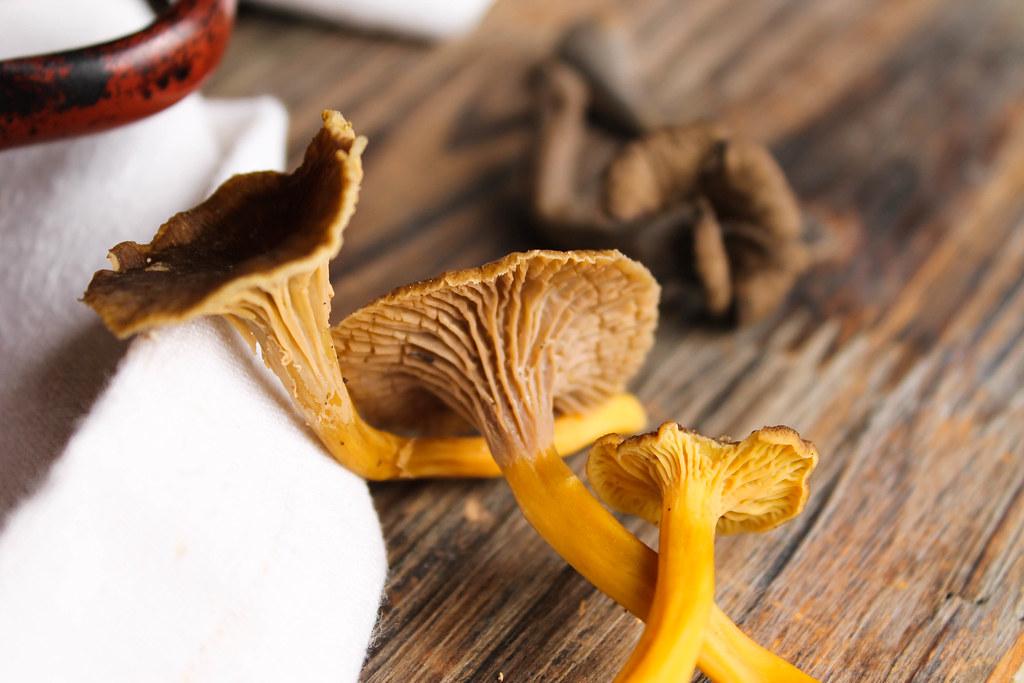 Ravioles aux champignons des bois