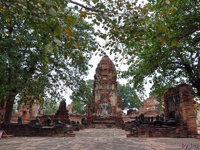 [旅遊]泰國大城-瑪哈泰寺Wat Maha That‧斷垣殘壁中的微笑樹中佛頭~♥