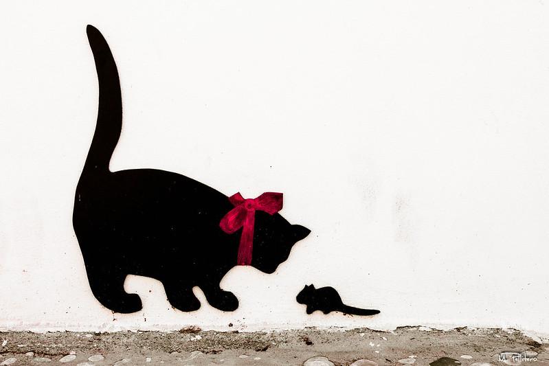 Jugando al gato y al ratón
