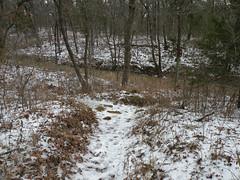 Rocky Point Trail 150224(004)