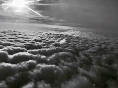 The Flight Home