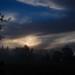 Early Petaluma Morning by bwaters23