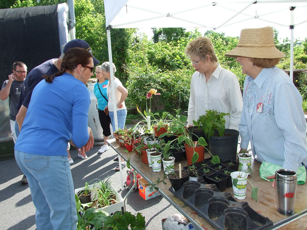 EMGVs at farmer's mkt-Donna Teasley-CC-BY-SA.jpg