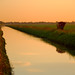 Small photo of Canal Near Krome at Sunrise
