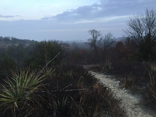 Tandy Hills on a foggy morning hike