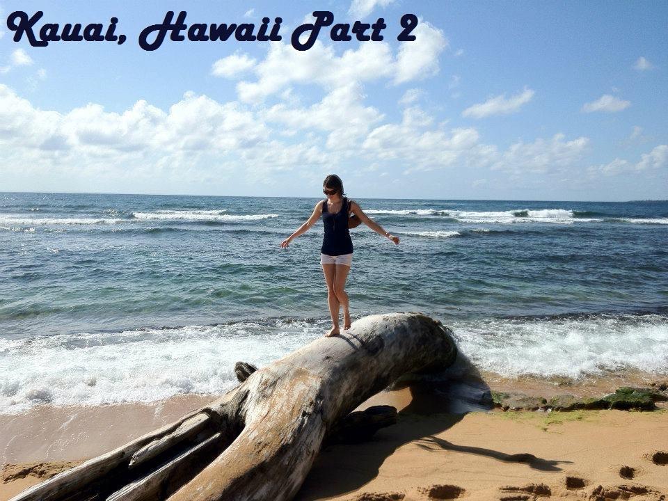KauaiPart2Done