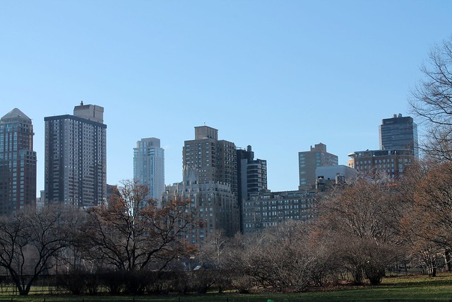Central Park view 2