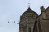 Église Notre-Dame de l'Assomption (XIe), Sainte-Marie-du-Mont, Manche, Cotentin, Normandie