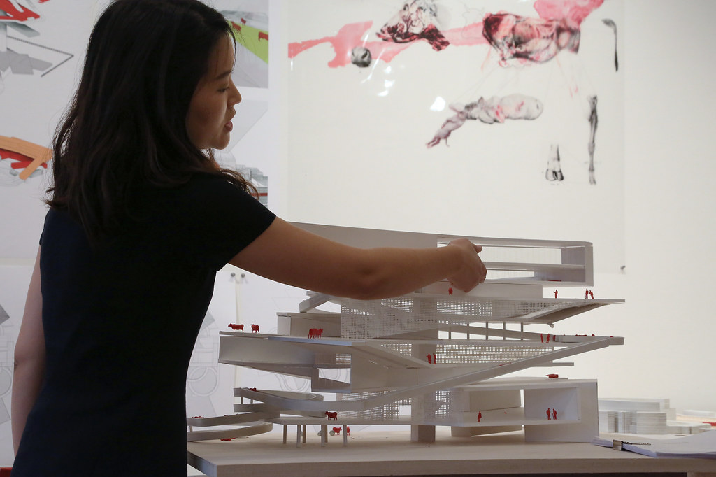 M.Arch.thesis review.