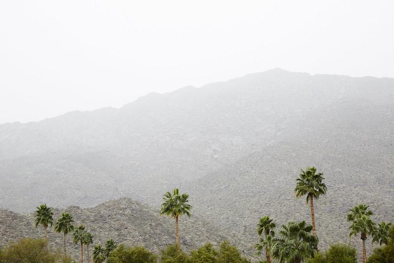 CA_Desert_0312
