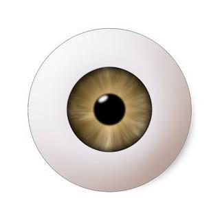 hazel_eyeball_sticker-r1eca116bca5c4e64829065ddfc68153b_v9waf_8byvr_512