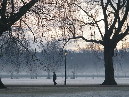 Walk in the park - early morning