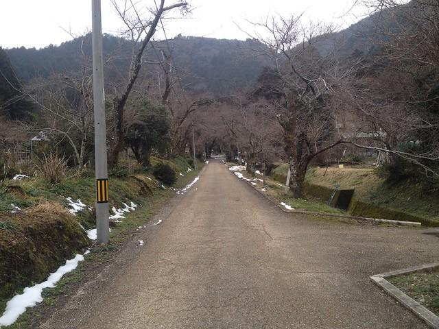 清滝山 徳源院参道