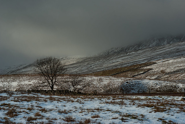 Great Britain - Yorkshire Dales - Near to Whernside peak