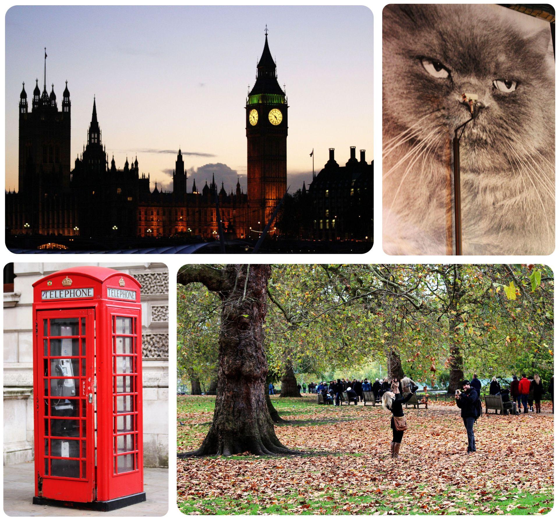 London November 2014