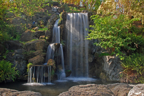 plants water landscape waterfall pond outdoor arboretum falls serene exhibits arcadia