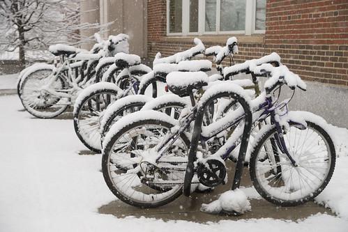 winter campus dartmouth