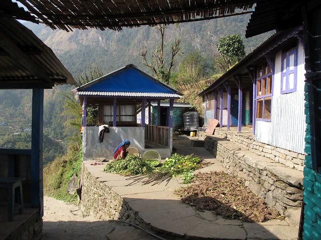 Annapurna Trek: Day 11 Bamboo to Jhinu Danda