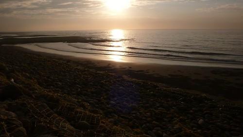 讓閱讀自然融入生活,透過生態旅遊、環境教育以了解複雜的海岸生態系  郭瓊瑩攝