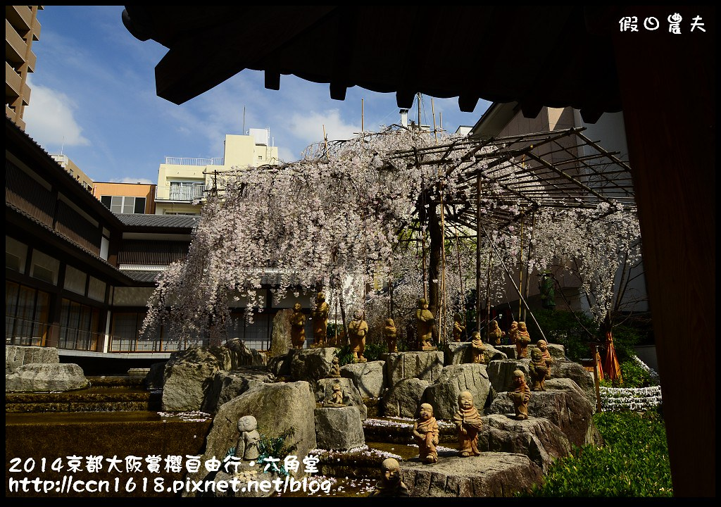 2014京都大阪賞櫻自由行.六角堂DSC_0416