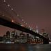 Brooklyn Bridge by Dave Gorman