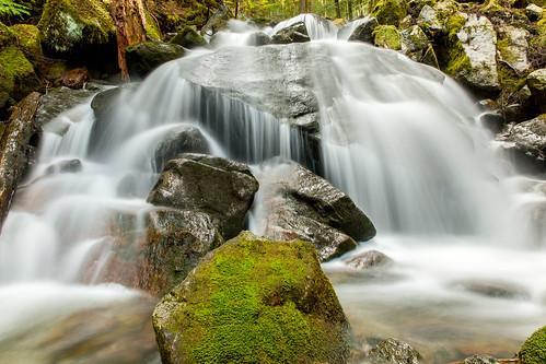 waterfall moss boulders masoncreek oldmasonlaketrail