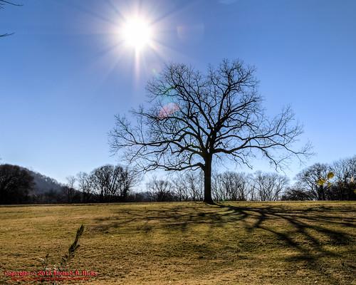 winter usa geotagged unitedstates nashville hiking tennessee edwinwarnerpark warnerparks vaughnsgap canon7dmkii steeplechasefarms sigma18250mmf3563dcmacrooshsm geo:lat=3605301167 geo:lon=8690653333