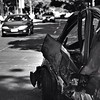 28.02.2010 | La madrugada del #27F apareció un vehículo chocado y en dirección contraria al tránsito de Avenida Collao.