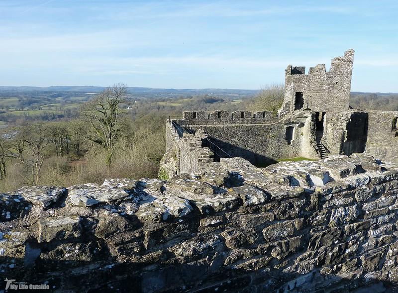 P1110039 - Dinefwr Castle