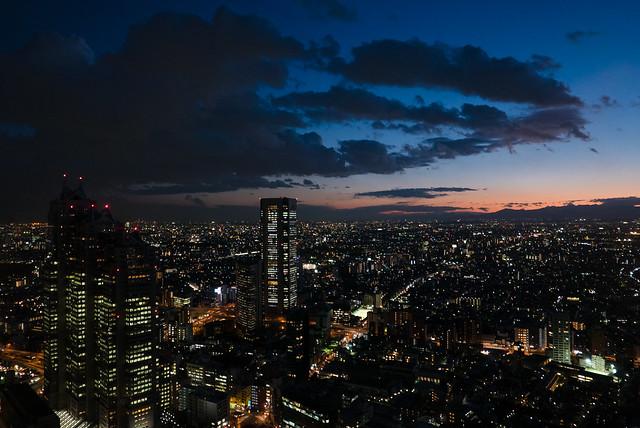 Shinjuku Scape