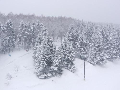 snow ski japan hokkaido skiing 北海道 日本 雪 niseko スキー場 温泉 スキー ニセコ ニセコプリンスホテル
