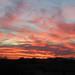 Desert Sunset II, Phoenix, Arizona