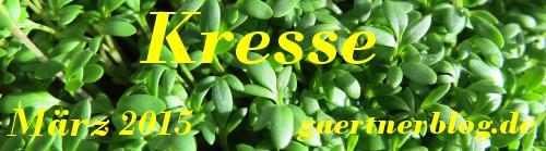 Garten-Koch-Event März 2015: Kresse [31.03.2015]