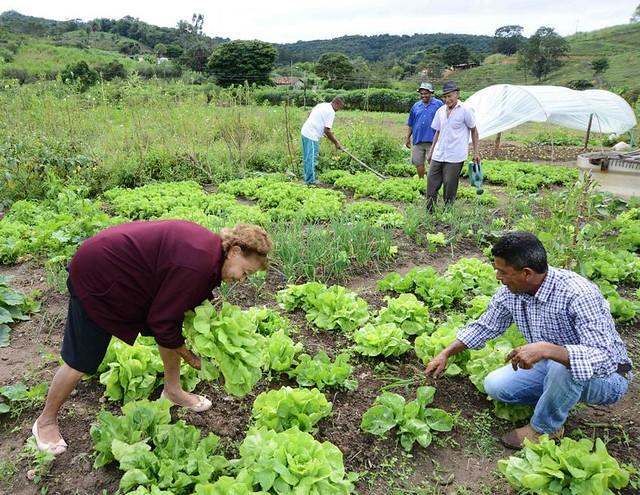 'Agroecologia potencializa outros direitos humanos', afirma pesquisador