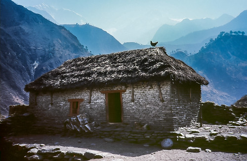 nepal chicken thatchedroof himalayas buckwheat machhapuchhre ghandruk annapurnasouth premonsoonhaze