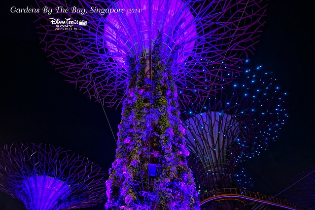 Singapore - Gardens By The Bay 07