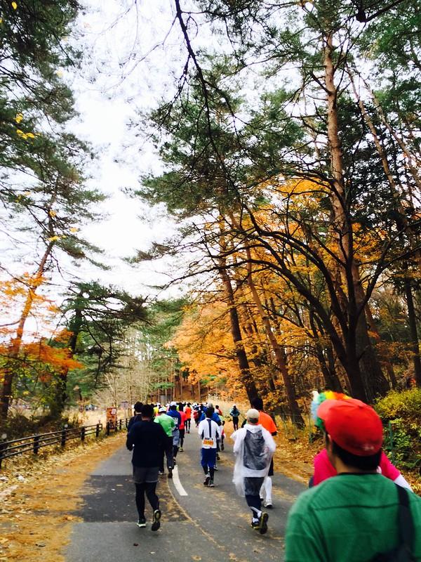 【2014 富士山馬拉松旅行】天啊! 一跑就愛上的唯美富士山馬拉松!