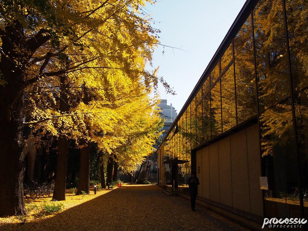 The University of Tokyo (Todai) TOKYO_0022