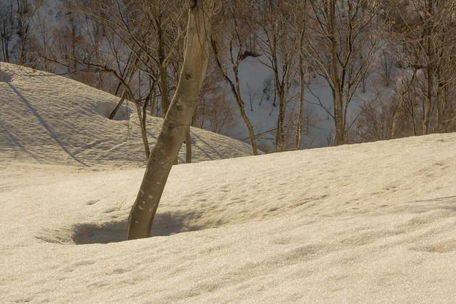 2014-04-13_00197_守門岳.jpg