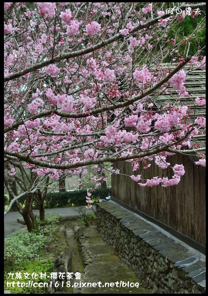 九族文化村-櫻花茶會DSC_4607