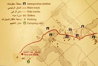 Wadi2-13